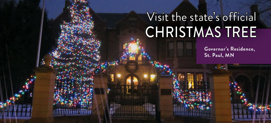 Visit the state's official Christmas tree