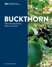image: Bucktron fact sheet front page