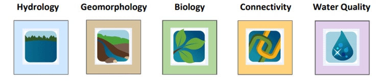 5 ecological component icons and names