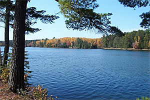 Image of Bear Head Lake State Park