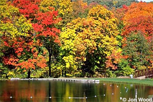 Image of Camden State Park