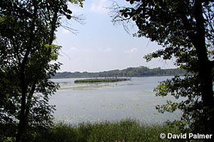 Image of Lake Maria State Park