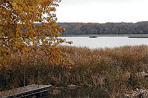 Image of Rice Lake State Park