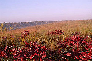 Image of Upper Sioux Agency State Park