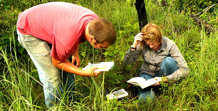 Two researchers in a state park, looking at field identification guides.