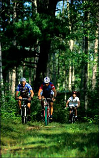 photo: Mountain biking in state forest