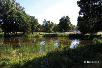 Webber Pond.