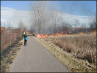 Prescribed burn along the Gateway State Trail.