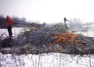 sna brush burning