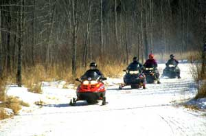 snowmobiles on a trail