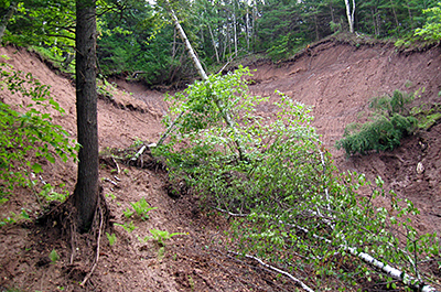 Photo of mudslide at Hemlock Ravine SNA