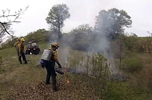 Photo of prescribed burn crew on the fire line.