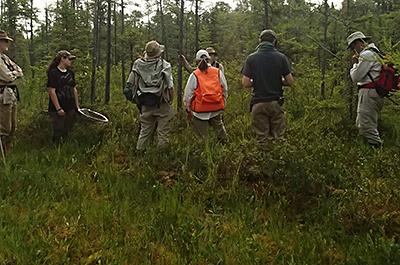 Photo of volunteers collecting prairie seed