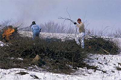 Photo of volunteers piling and burning brush