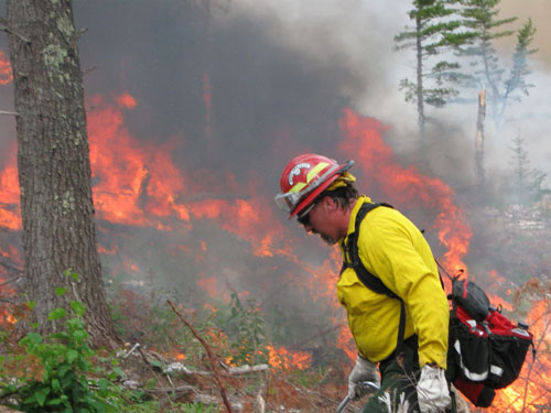 A prescribed burn in the Cloquet area to aid habitat.