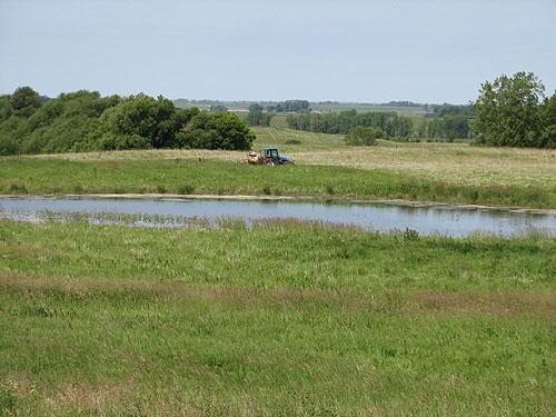 Maintaining grassland habitat on a Fergus Falls area WMA.