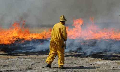Nicollet area wildlife staff conduct a prescribed burn.