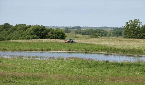 Habitat conservation work in the Owatonna area.