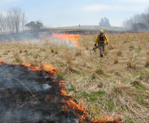 A prescribed burn to benefit habitat at the Whitewater Wildlife Management Area.