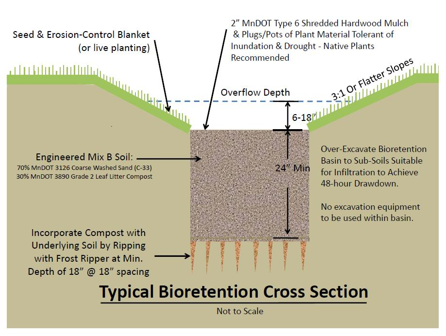 Typical bioretention cross-section (graphic)