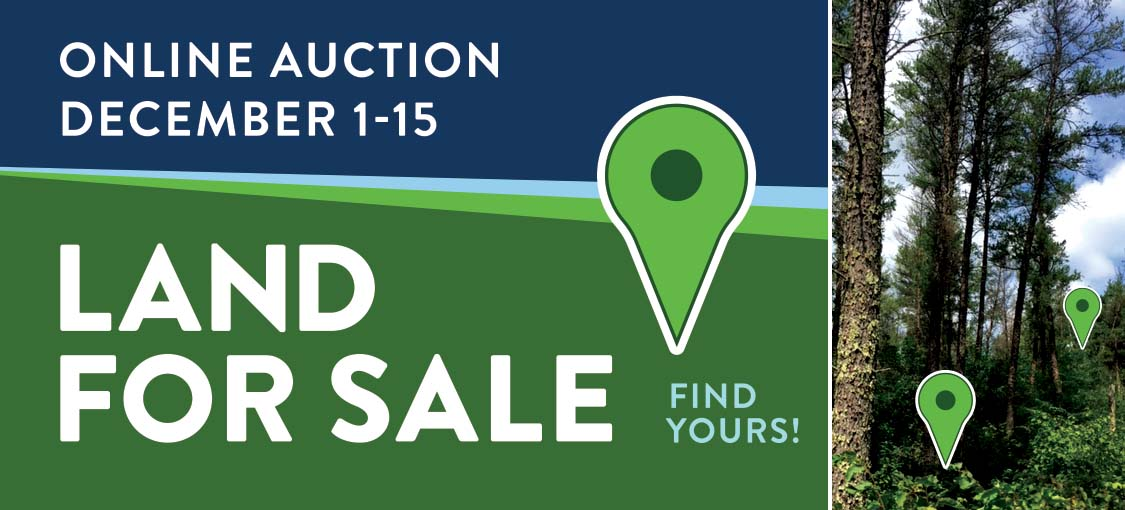 Online auction July 28 - August 6. Land for sale, find yours!