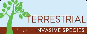 Terrestrial Invasive Species