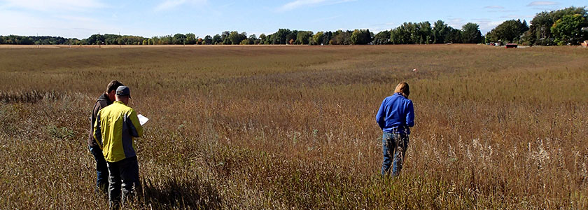 Three people standing in a brown and green prairie field looking at the plants.