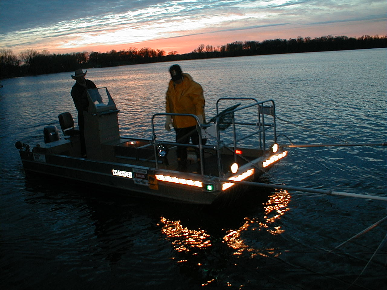 Electrofishing at night