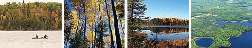 images of Koochiching Washington Forest Legancy Project