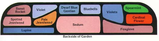 Design For Butterfly Garden On A Shady Site.