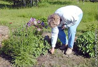 Mavis Wagner weeding her garden