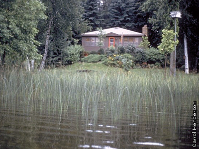 home on lake with bullrush