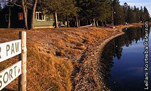 shoreline after restoration