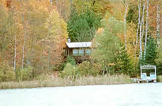 cabin with many trees, providing a framed scenic view