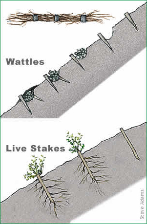 illustration of installed wattles and stakes