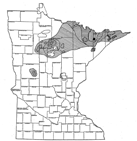 Forest tent caterpillars outbreak map 1937