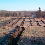 Photo showing trench in a field for tree planting