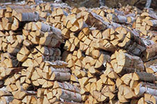 firewood in bundles