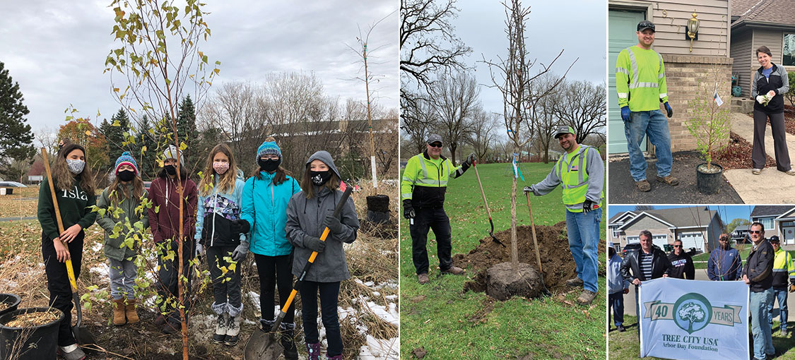 four images showing a variety of people planting trees