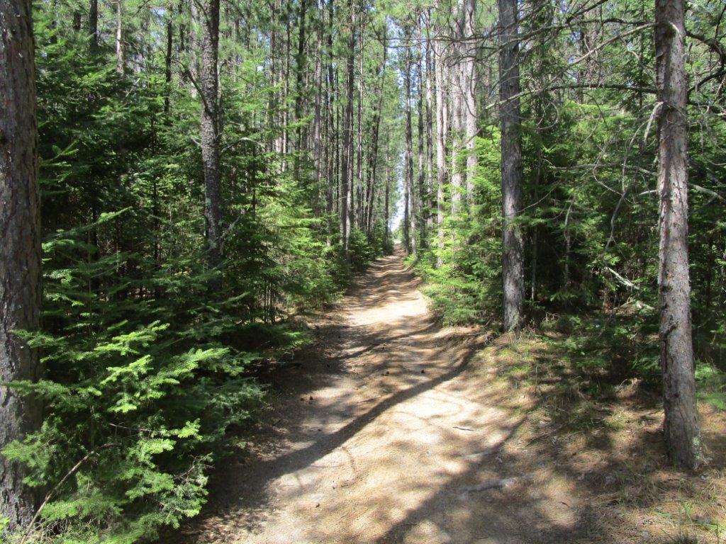 Kelliher ATV Trail