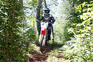 St. Croix State Forest Trails