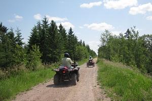 Wilton Trails Northwest