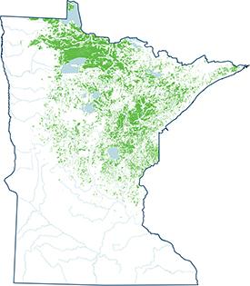 Map of Minnesota Peatlands