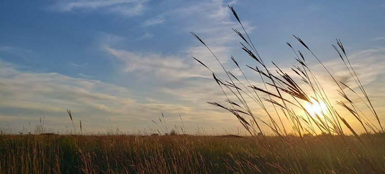 Sunset at Bluestem Prairie