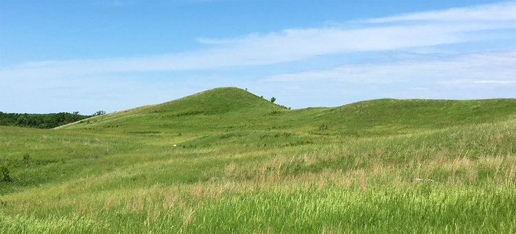 Hills in the summer at Cottonwood River Prairie
