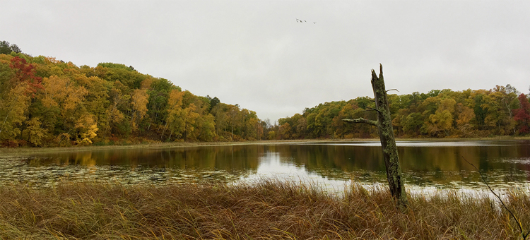 Fall lakeshore at Mille Lacs Moraine