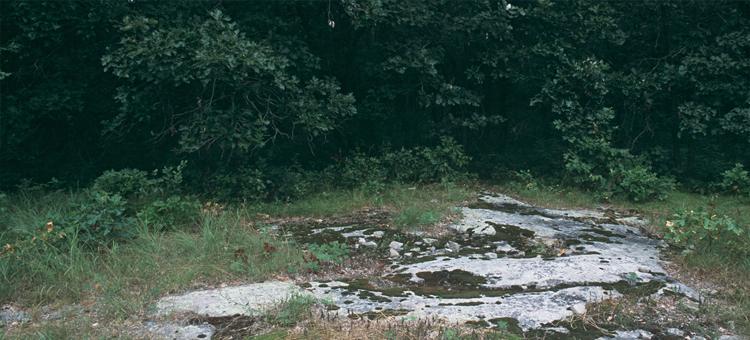 Bedrock outcrops at Quarry Park