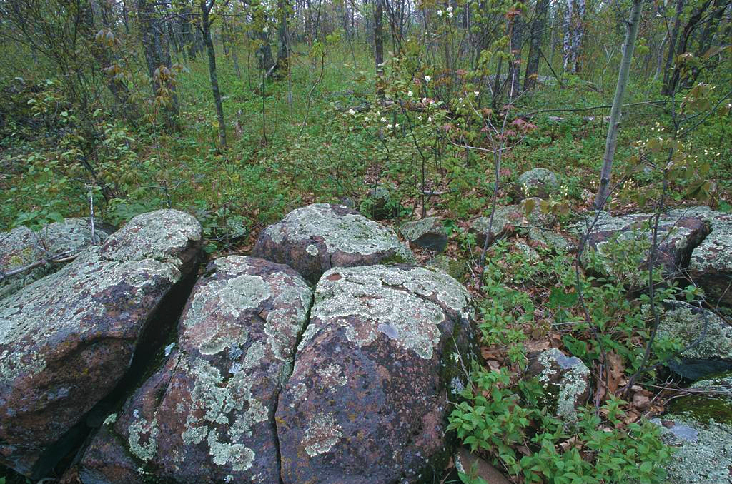 moose mountain scientific and natural area minnesota dnr