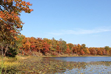 Fall colors from lakeshore