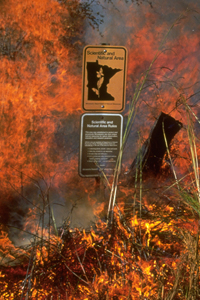 Presribed burn with SNA boundary sign in the foreground
